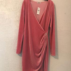 Fashion Nova Brand New Pink Velvet Dress